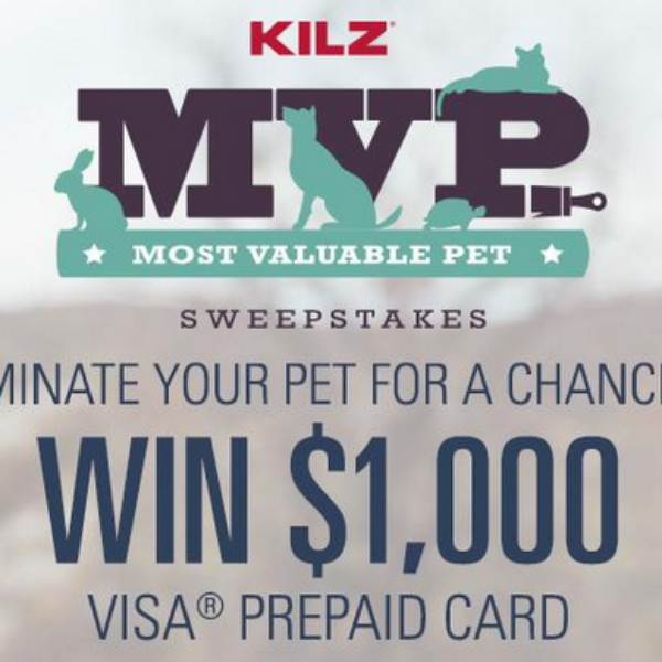 KILZ: Win $1,000 Visa Gift Card