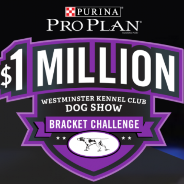 Purina Pro Plan: Win $1,000,000 or a one year supply of Dog or Cat food